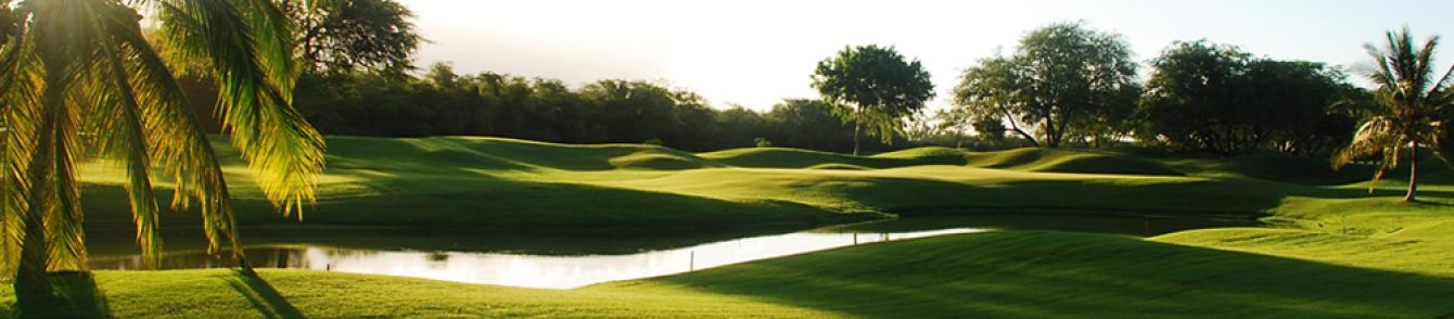ゴルフをこよなく愛するゴルファのための情報サイト